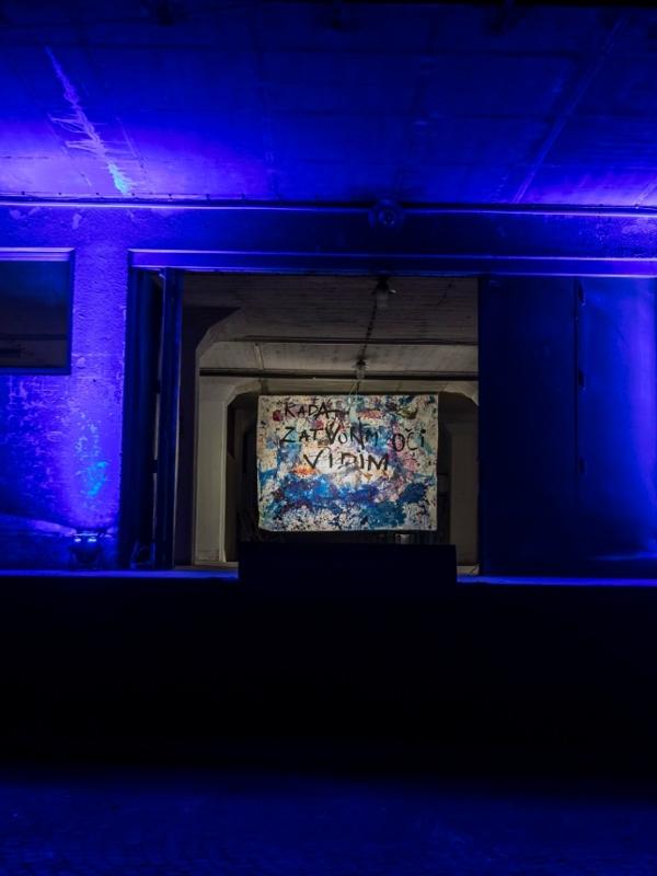 Otvorena izložba Svetlane Ninković: Kada zatvorim oči vidim - plavo