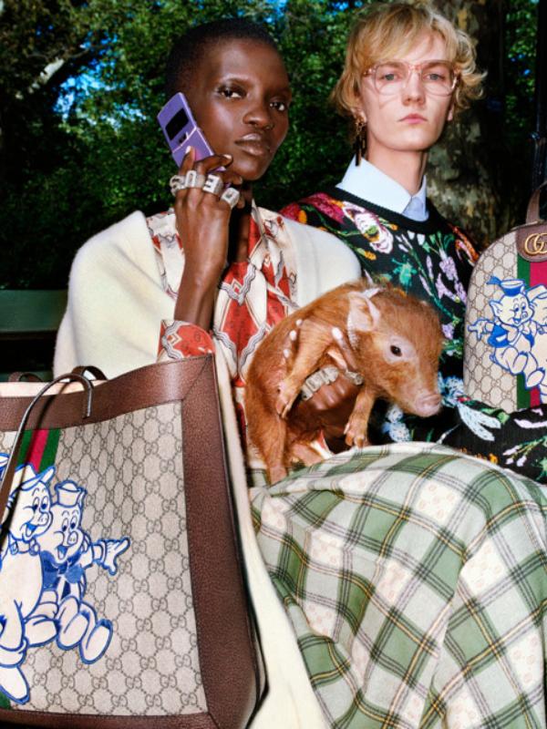 Tri praseta: Gucci kapsula kolekcija