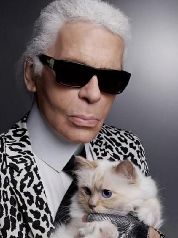 8 stvari koje možda ne znate o mački Karla Lagerfelda – Šupet