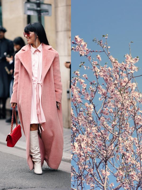 """15 stvari u """"sakura"""" boji koje će postati vaše omiljene"""