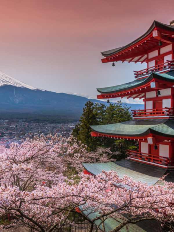 Sakura: magično cvetanje trešnje u Japanu