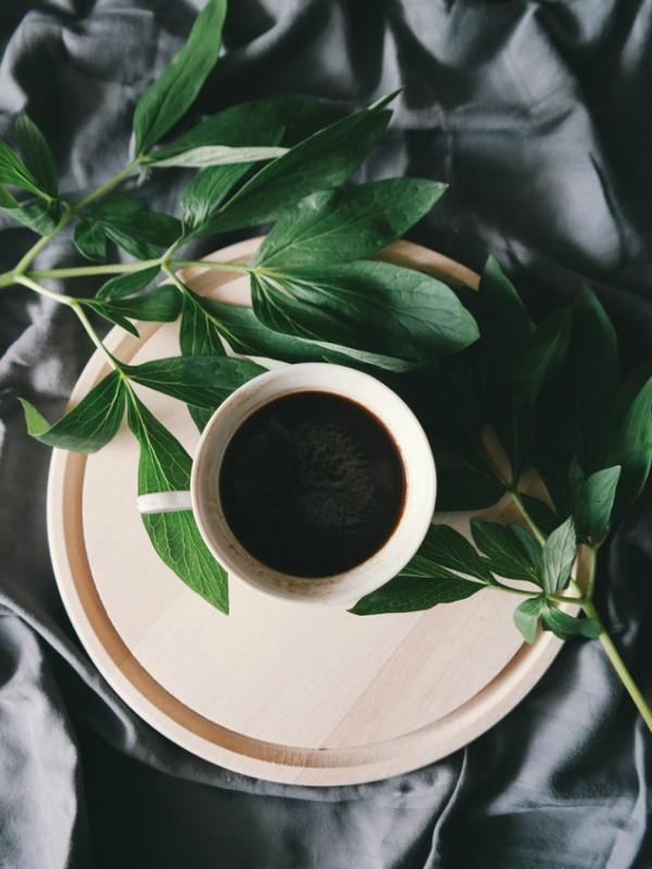 Zašto je kafa toliko magična?