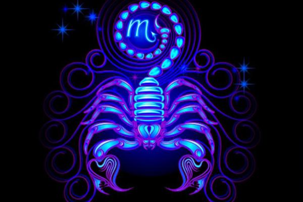 10-razloga-zasto-volimo-skorpije (5).jpg